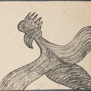 El Quetzal de Guatemala. Ilustración recogida en el BESTIARIUS STEBANENSIS.