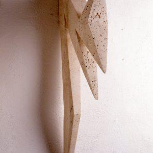 Pájaro V